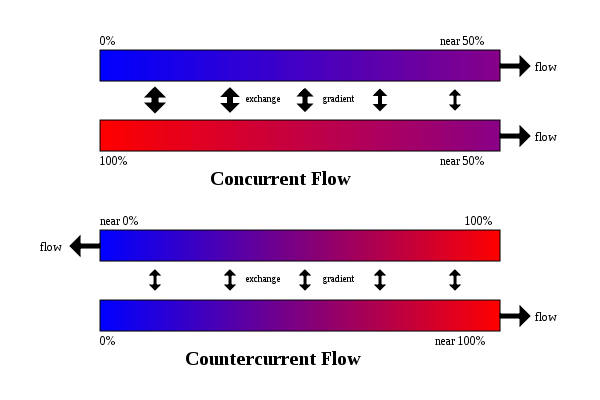 Counter Current Flow